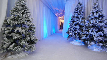 Christmas Party Themed Events