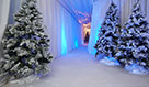 Christmas Party Theming